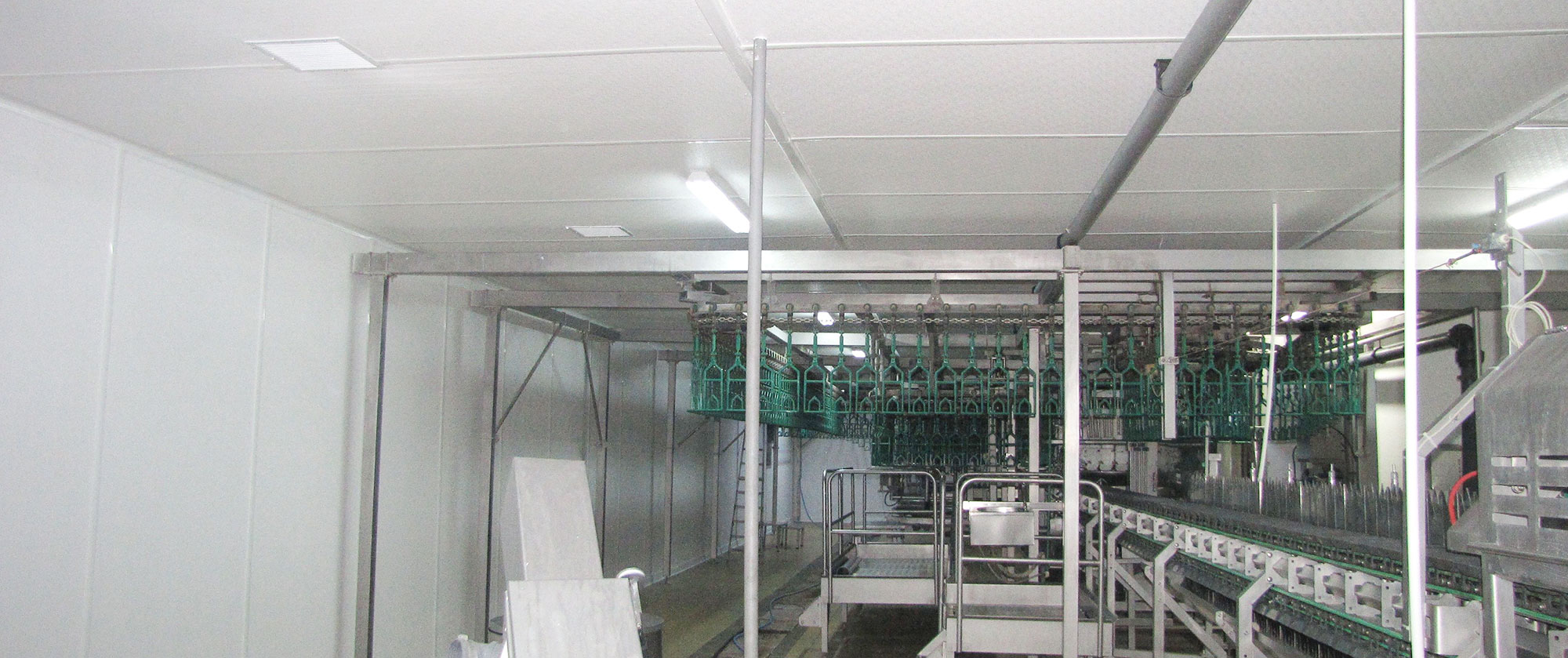 Chicken meat processing factory