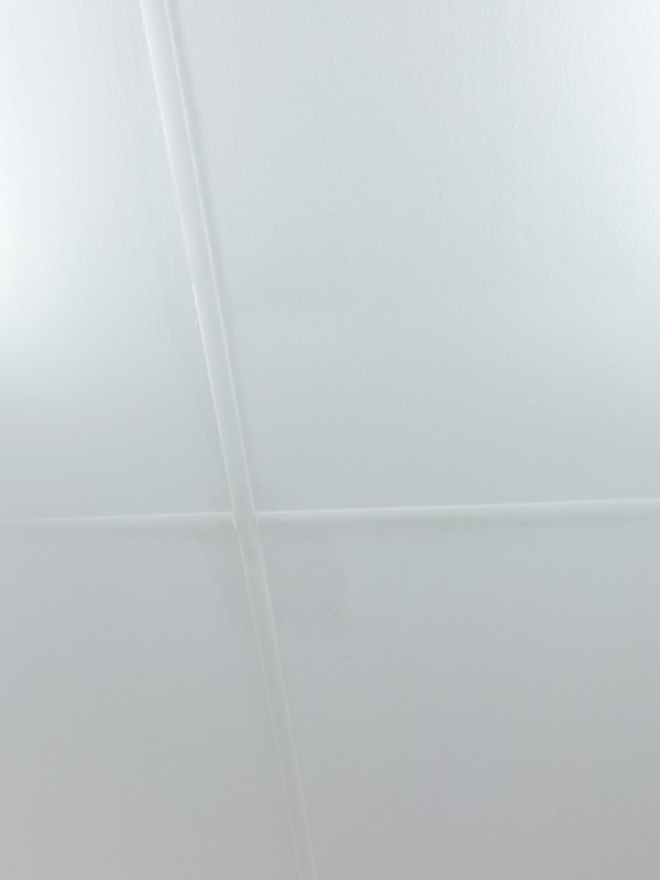 hygienic and durable ceiling