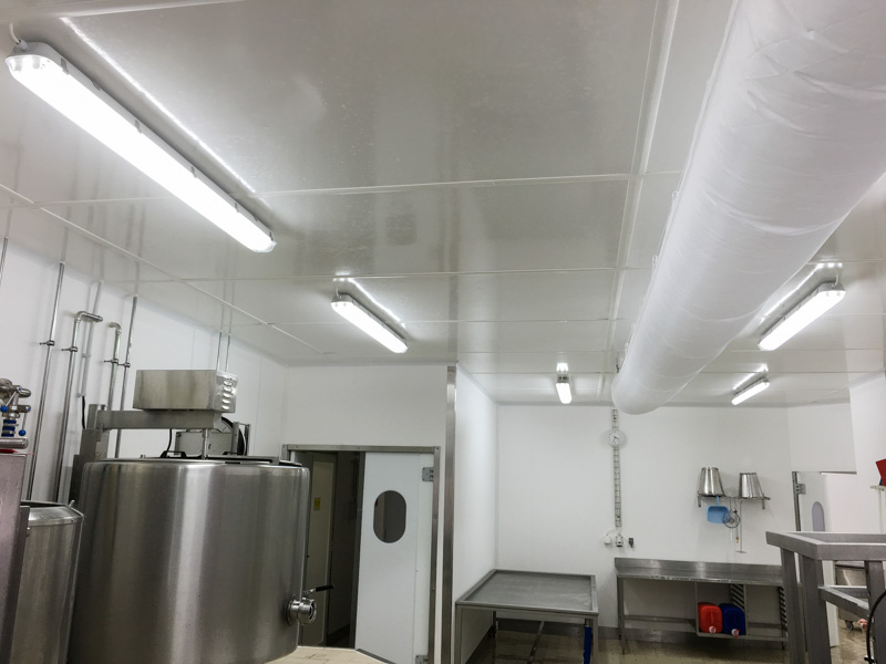 hygienic ceiling dairy facility