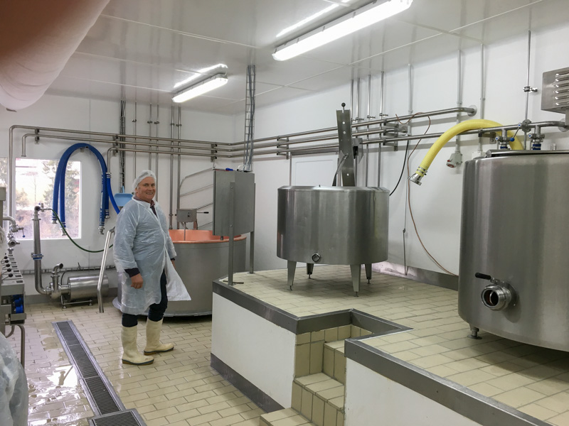 hygienic and durable dairy production