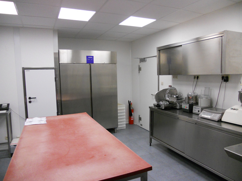 hygienic walls and ceiliing in kitchen