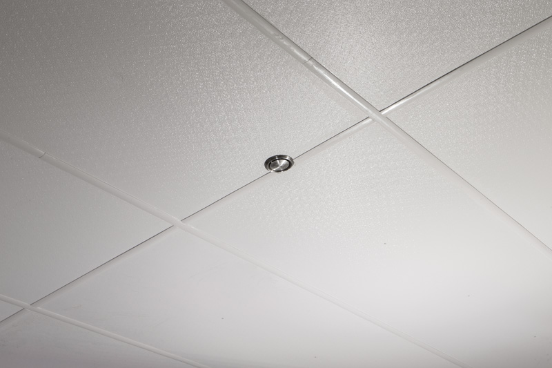 Hygienic ceiling in meat processing plant